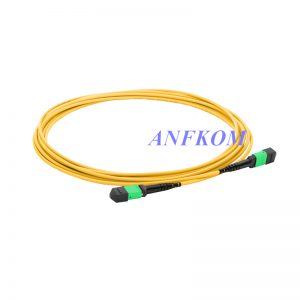 Armored MTP-MTP trunk cable