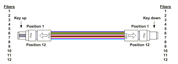 type A MPO Polarity