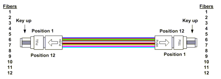 type B MPO Polarity